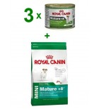 ROYAL CANIN Mini Mature +8 8kg + 3 x 195 g puszka