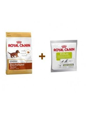 ROYAL CANIN Dachshund Junior 1,5 kg + ROYAL CANIN Educ 50g